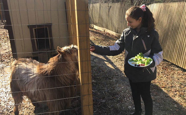 West Hills Academy Student Feeding the Goat on Campus